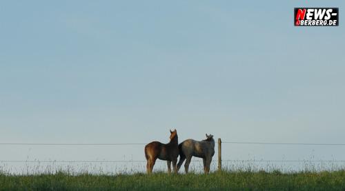 Foto(s) des Tages – Daily moments! ´Weites Land!´ Der Pferdeflüsterer – Der mit dem Wolf tanzt
