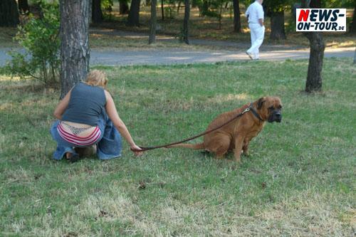 Daily Moments: ´Foto des Tages´-  Auch in Odessa (Ukraine) ist es nicht immer so wie es aussieht!! – Aber nur ´Bello´ musste mal