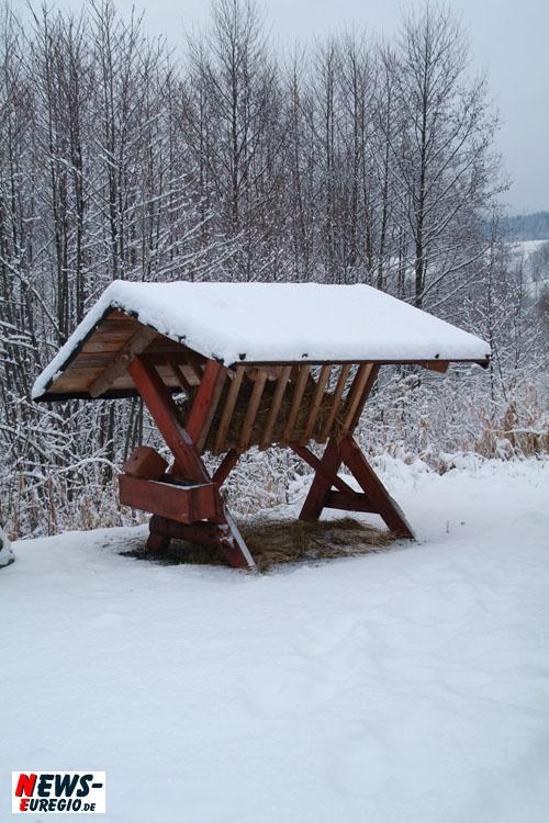 Nationalpark Eifel: Der Winter ruft!! Kostenfreie Wanderung mit den Rangern