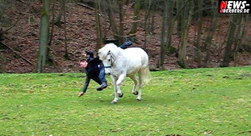 TV.NEWS-Oberberg.de: [Eckenhagen/Final Update!] Schlagersänger NIC ´Einen Stern´ fiel beim Videoclipdreh zum Song ´Zwei weiße Pferde!´ vom Pferd!! Arm gebrochen