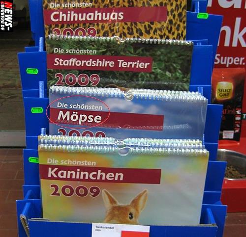 Daily Moments: [Foto des Tages] NEWS-Oberberg.de hat jetzt schon die ´schönsten Möpse 2009´ gefunden