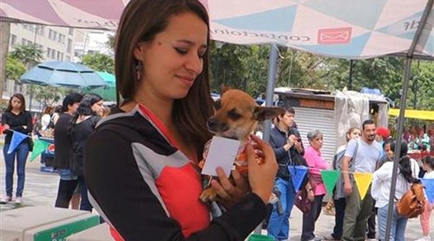 mexiko-city_sonntag-ist-hundetag
