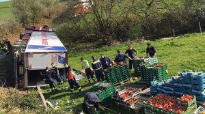 Morsbach (Wittershagen): Navigationsfehler! Ab in die Pampa. 40-Tonner mit Obst und Gemüse umgekippt!