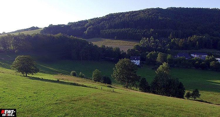 Bergneustadt (Pustenbach): Tödlicher Unfall! 17-jähriger bei  Baumfällarbeiten verunglückt. Kripo ermittelt | Oberbergischer Kreis