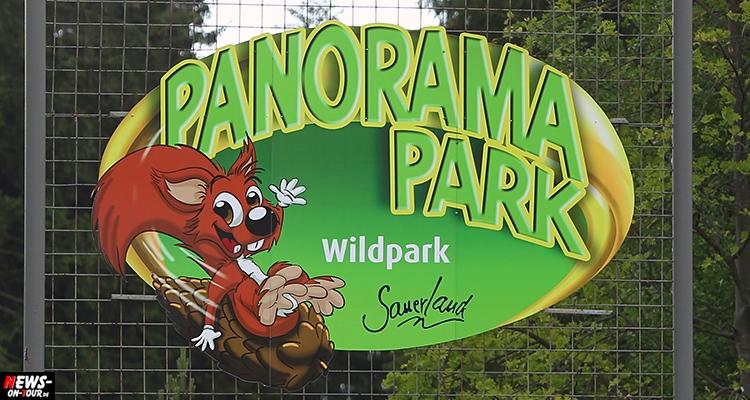panorama_wildpark_ntoi_sauerland