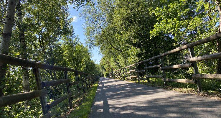 Panorama-Radwege zurzeit sehr beliebt! Gesamtnetz umfasst 314 km und 14 Tunnel